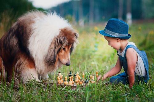 Boy playing chess with his best friend